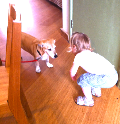 Little G making new friends with Rosie the dog