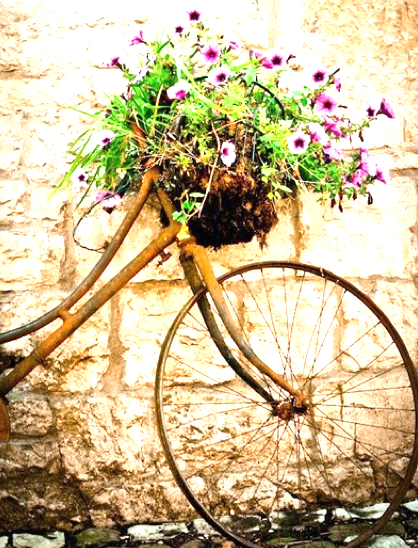 I wonder if I could get away with a rusted bike in the garden with flowers?