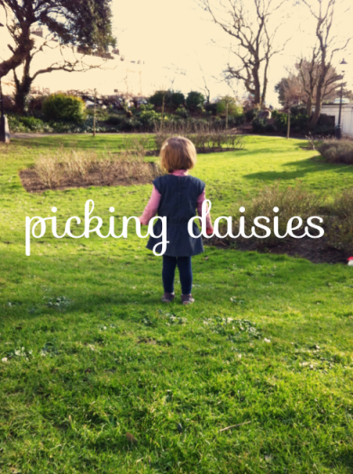 Monday…pottering around and discovering daisies