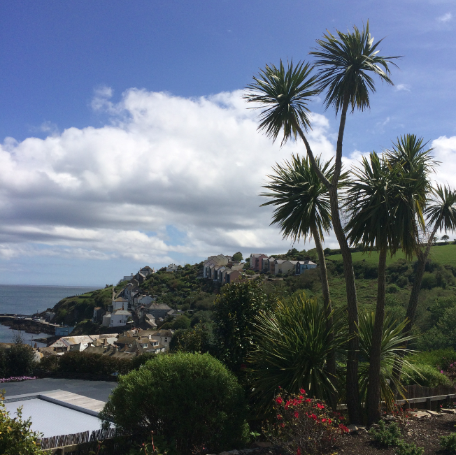 View over Mevagissey harbour