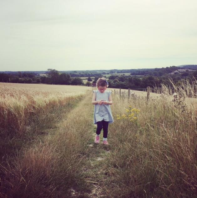 Glynde to Lewes